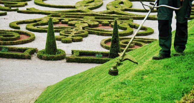 attività manutenzione del verde