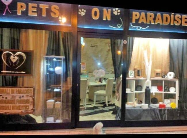 negozio pets on paradise
